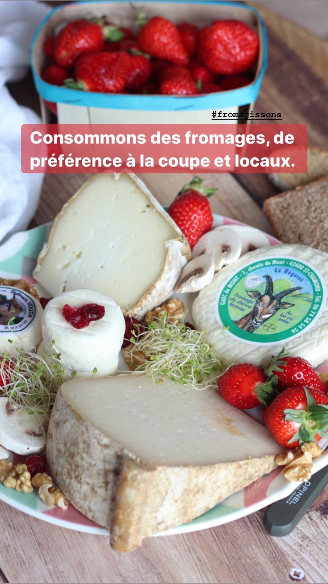 story-instagram-fromage-fromagissons